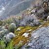 En Quebrada Santa Cruz - Ancash Perú