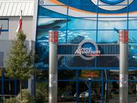 Great Aquarium Saint-Malo