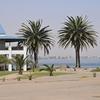 Erongo - Walvis Bay - Namibia