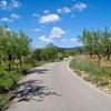 Erste Ausfahrt - Calvia Mallorca - Spain