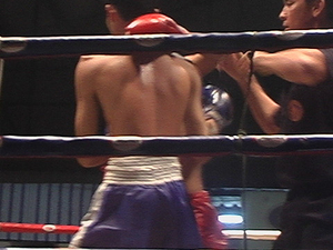 Evening Thai Boxing Match Photos