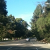 Elysian Park On Stadium Way