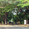 George Brown Darwin Botanic Gardens