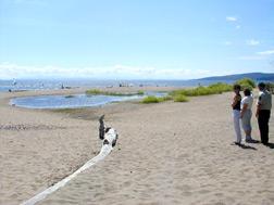 Fair Haven Beach Campsite