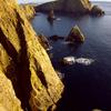 Fair Isle West Cliffs