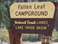 Lake Tahoe Basin Fallen Leaf Campground