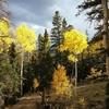 Fall Leaves Boulder