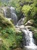 Falls In The Rock Garden