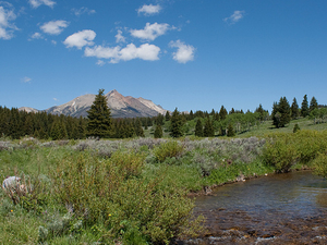 Fawn Pass Trail