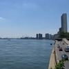 FDR Drive & East River NY