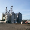 Ferndale Grain