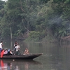 Ferry In Sundarbans