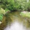 Fish Hook River