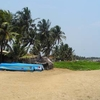 Fishing Boats At Negombo