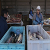 Fish Market In Nuuk