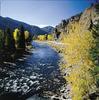 Flowing Thru Shoshone National Forest