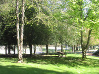 Forbes Creek