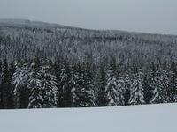 Mont Mouchet