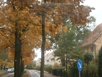 Gollanczstraße