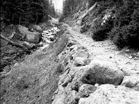Fern Lake Trail