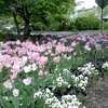 Sellwood Park