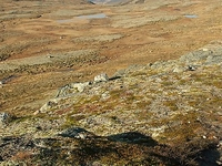 Forollhogna National Park