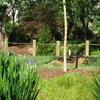 Furman University Japanese Garden