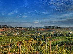 Wonderful Tuscany Wine Tour In Chianti Photos