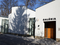 Gallery of Art Colony