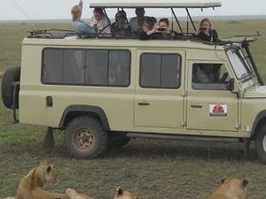 4 Days Serengeti Big Five Luxury Safari Photos