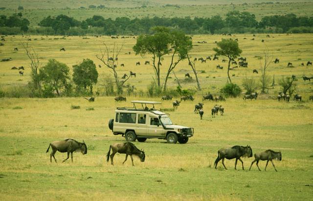 Selous Game Reserve And Dar Es Salaam City Tour Photos