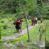 Gangtok - Sewaro Rock Garden