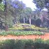 Gardens-gardens.