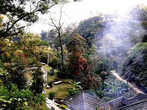 Gedong Songo Temple + Coffee Plantation Photos