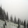 GenTrail-08 For Fielding Coal Creek Fire Trail - Glacier - Montana - USA