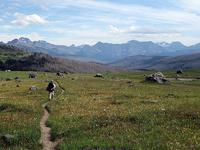 Fielding Coal Creek Trail