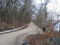Doghead Trail