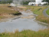Geothermal area in Hveragerdi