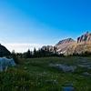 Glacier NP Mountain Goat