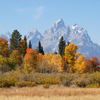 Grand Teton Autumn - Wyoming - USA