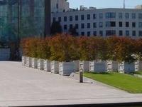 Parc Andre Citroen
