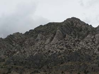 Burnt Springs Range