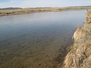 Greys River