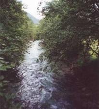 Gschnitzbach