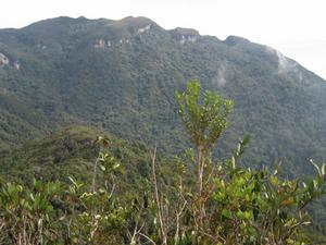 Mount Tahan