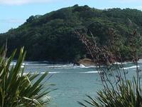 Goat Island