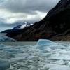 Grey Glacier Icebergs Stevage