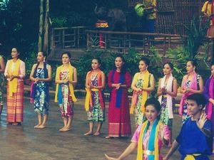 Half Day Rose Garden Thai Cultural Show Photos