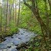 Hammonasset River