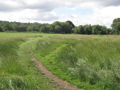 Hampstead Heath Extension